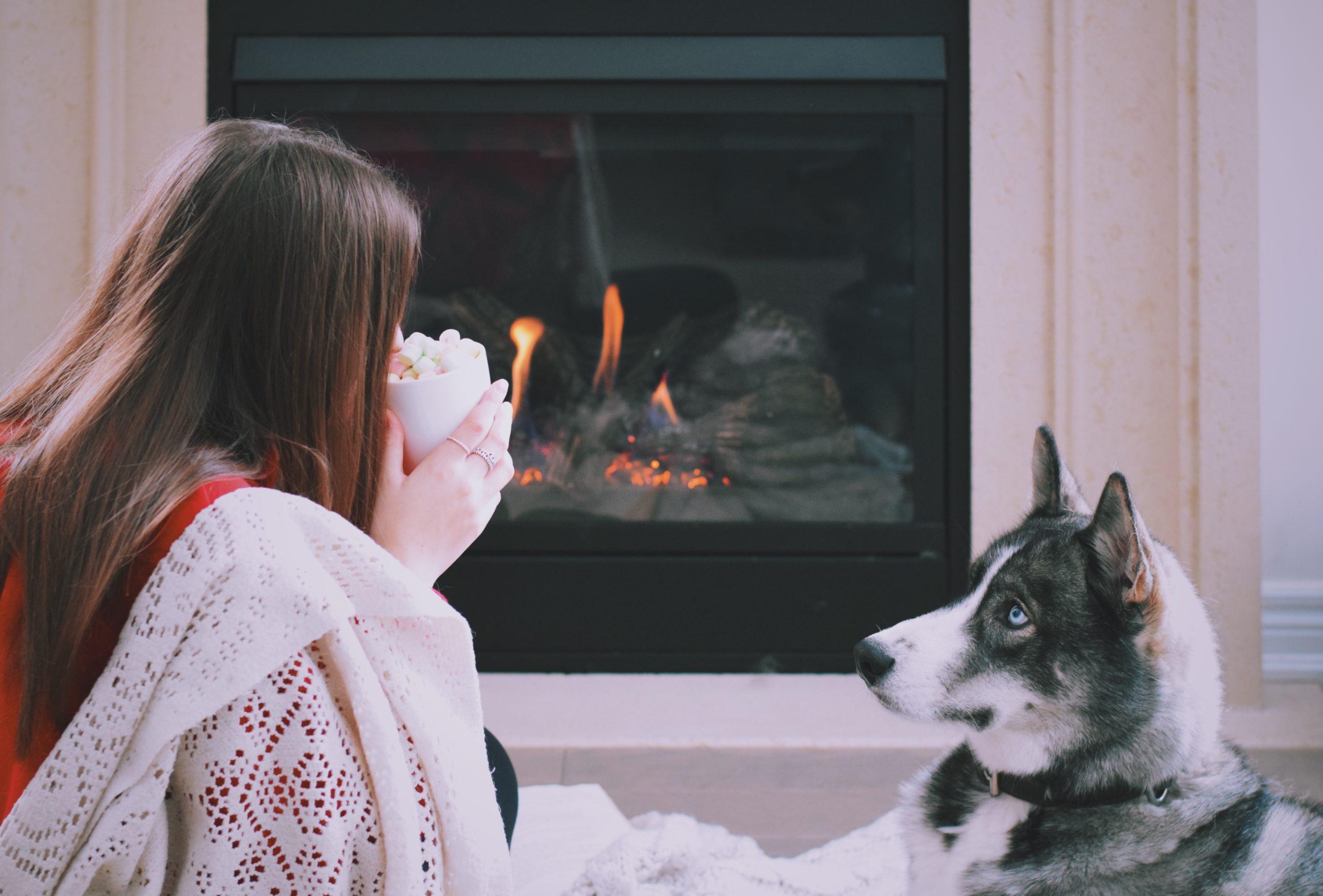 Cómo limpiar la chimenea - Chica y perro delante de chimenea